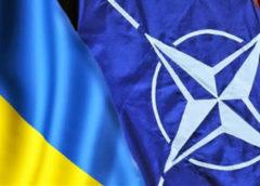 Українці світу вітають визнання з боку НАТО євроатлантичних прагнень України